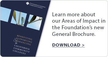 Learn more about our Areas of Impact in the Foundation's new General Brochure