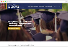 Vision for Success website thumbnail
